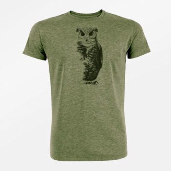 greenbomb animal owl