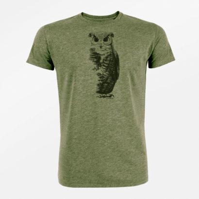 greenbomb animal owl