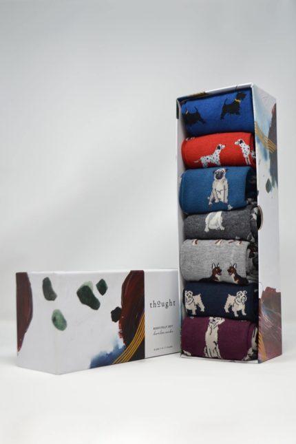 Thought dárkové balení pánských ponožek canin