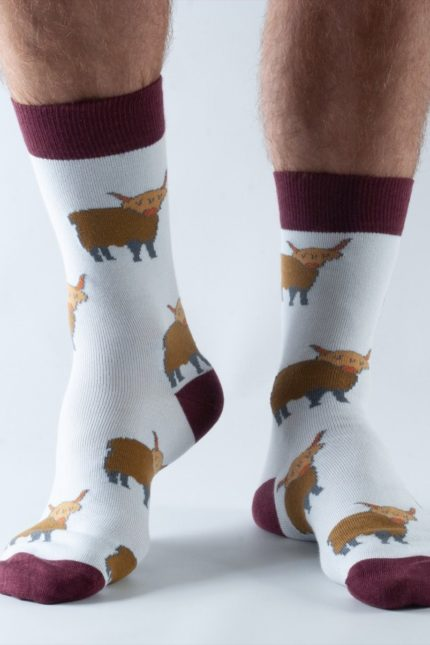 Doris and Dude pánské ponožky highland cow